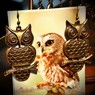 Серёжки OWL